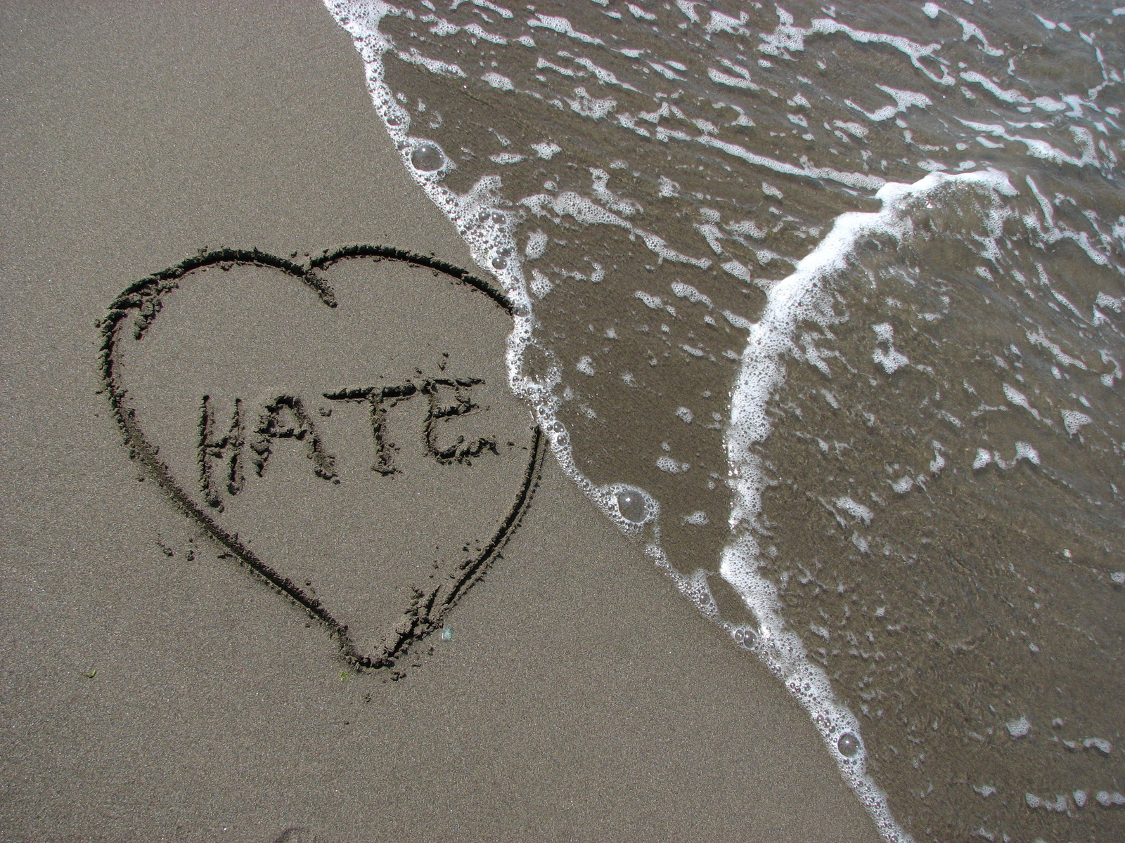 Results image of Hate in sand